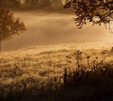Η πραγματική μας πνευματική ανάπτυξη μετριέται από τον τρόπο με τον οποίο αντιμετωπίζουμε το θάνατο