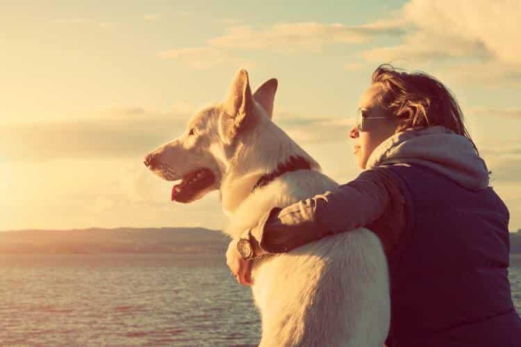 3 «υπερδυνάμεις» των σκύλων που δεν σταματούν να μας εκπλήσσουν
