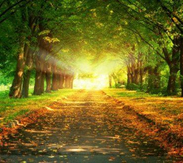 Ο δρόμος προς την αλλαγή
