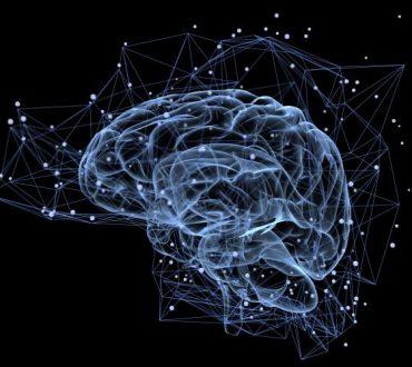 10 νέα εντυπωσιακά στοιχεία που μάθαμε για τον εγκέφαλο το 2018