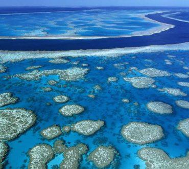 Η Αυστραλία σχεδιάζει να ρίξει τόνους υγρών αποβλήτων στον Μεγάλο Κοραλλιογενή Ύφαλο