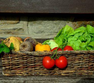 Έρευνα: Ποια είναι η ιδανική διατροφή για τον άνθρωπο και το πλανήτη μας
