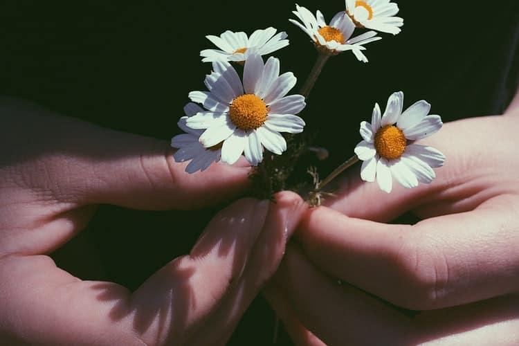 Μενέλαος Λουντέμης: «Να αγαπάς όπως πρέπει να αγαπηθούν μια μέρα όλοι οι άνθρωποι»