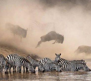 20 συναρπαστικές φωτογραφίες του Instagram που αγάπησε και επέλεξε το National Geographic
