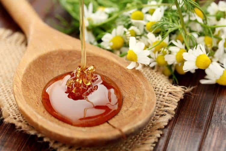 Το ελληνικό ελαιόλαδο και μέλι κέρδισαν πάνω από 60 διακρίσεις σε διεθνή βραβεία