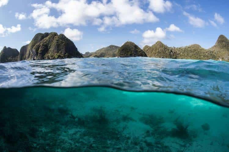 Γκρέτα Τούνμπεργκ: Ο αφοπλιστικός λόγος να δράσουμε άμεσα για την κλιματική αλλαγή (Βίντεο)