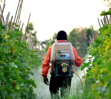 Monsanto: Υποχρεωμένη να αποζημιώσει ζευγάρι που πάσχει από καρκίνο λόγω του επικίνδυνου Roundup