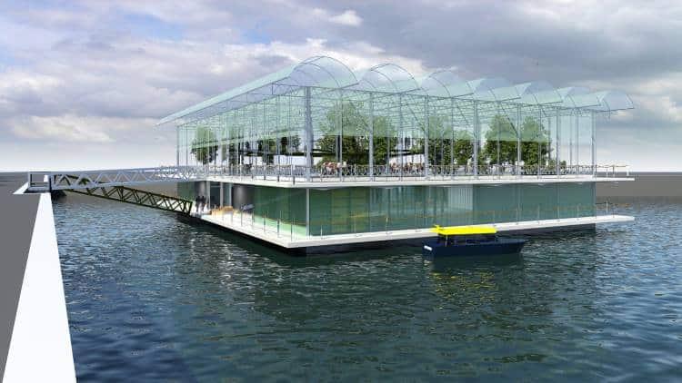 Ρότερνταμ: Η πρώτη πλωτή γαλακτοκομική φάρμα δημιουργείται ως απάντηση στην κλιματική αλλαγή