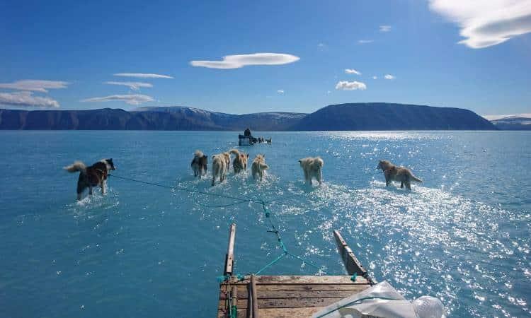 Φωτογραφία αποκαλύπτει τη σκληρή αλήθεια για το λιώσιμο των πάγων στη Γροιλανδία