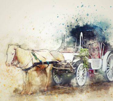 Χόρχε Μπουκάι: Η αλληγορία της άμαξας
