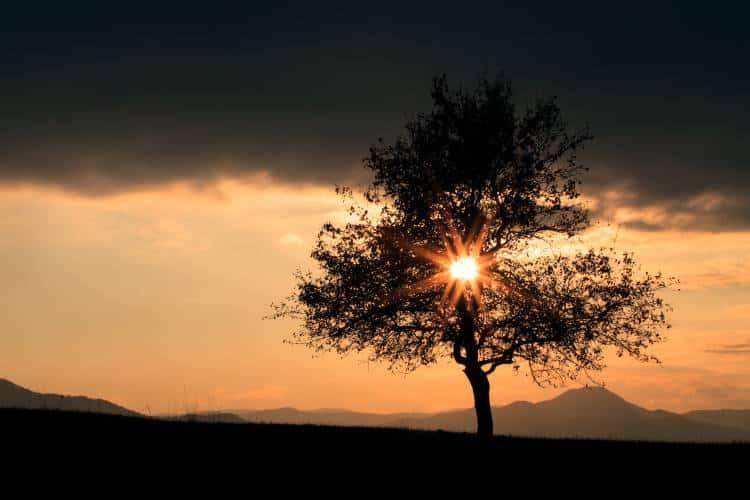 Πώς μπορούμε να βρούμε γαλήνη στις σκοτεινότερες πλευρές της ζωής μας