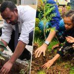 Η Αιθιοπία φύτεψε 350 εκατομμύρια δέντρα σε μία μόνο μέρα, σπάζοντας κάθε ρεκόρ