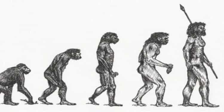Το αρχαιότερο δείγμα Homo Sapiens είναι ελληνικό και βρέθηκε σε σπήλαιο της Μάνης