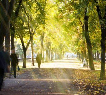 Έρευνα: Η επαφή με τη φύση μειώνει την επιθυμία για ανθυγιεινές συνήθειες