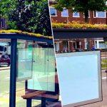Η Ολλανδία καλύπτει τις στάσεις λεωφορείων με εκατοντάδες φυτά ως δώρο προς τις μέλισσες