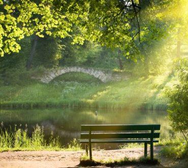 Χρειαζόμαστε τη σιωπή, όσο χρειάζονται τα φυτά το φως