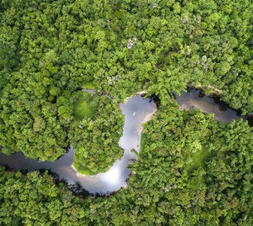 8 πράγματα που θα συμβούν αν καταστρέψουμε το δάσος του Αμαζονίου