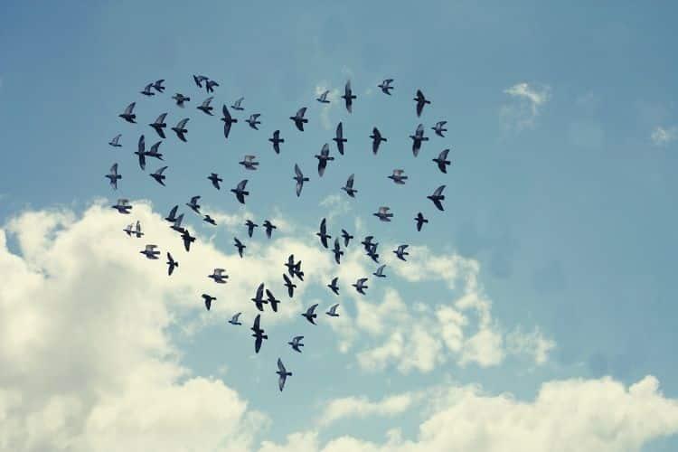Η αγάπη και ο έρωτας είναι τα καλύτερα όπλα κατά του φόβου