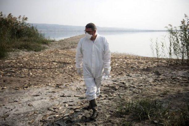 Λίμνη Κορώνεια: Η στάθμη του νερού πέφτει δραματικά και το οικοσύστημα αργοπεθαίνει