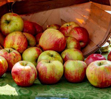 Τα 10 πιο γευστικά και θρεπτικά φρούτα και λαχανικά του φθινοπώρου