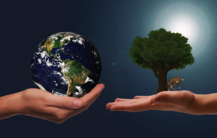 7 απλοί τρόποι να κάνουμε ανακύκλωση κάθε μέρα