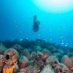 Ανοίγουν τα πρώτα υποβρύχια μουσεία της χώρας – Το πρώτο θα βρίσκεται στην Αλόννησο