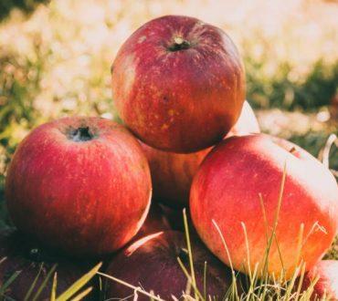 8 εφευρετικοί τρόποι να χρησιμοποιήσουμε τα μήλα