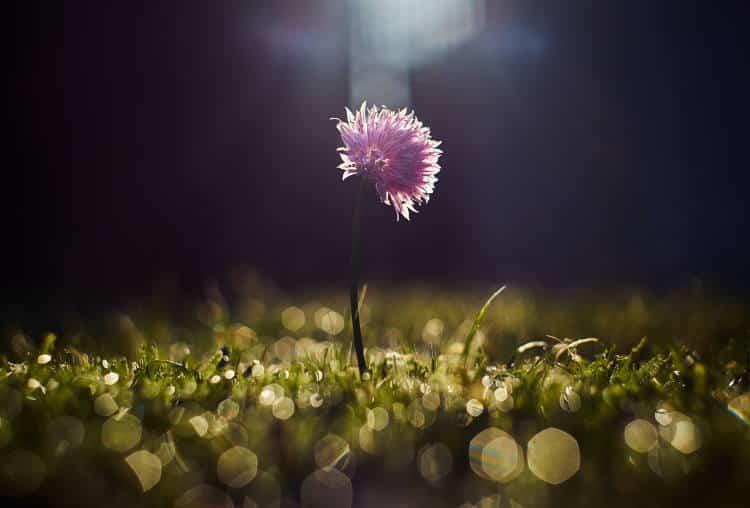 Δυο είδη μοναξιάς υπάρχουν: Αυτή που προέρχεται από τον εαυτό μας και αυτή που προέρχεται από τους άλλους