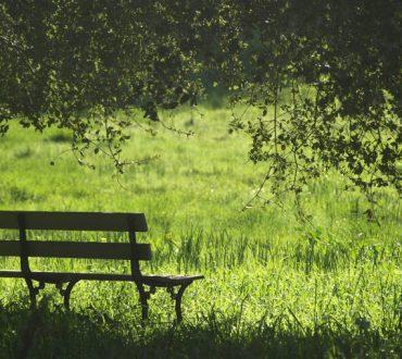 Η επαφή με τους χώρους αστικού πρασίνου προλαμβάνει τον πρόωρο θάνατο, σύμφωνα με έρευνα