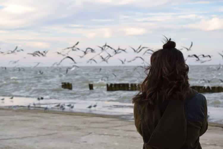 Υπάρχει κάποια ιδιαίτερη σχέση ανάμεσα στα πτηνά και τους ανθρώπους;