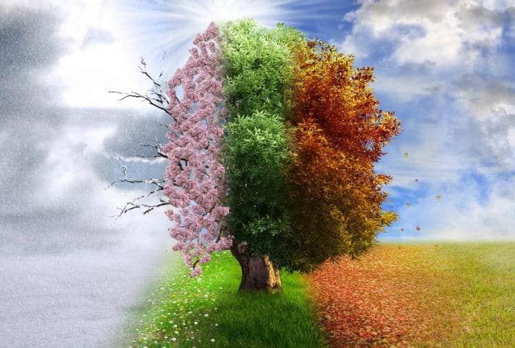 Οι «Τέσσερις Εποχές» του Βιβάλντι προσαρμόστηκαν στην κλιματική αλλαγή