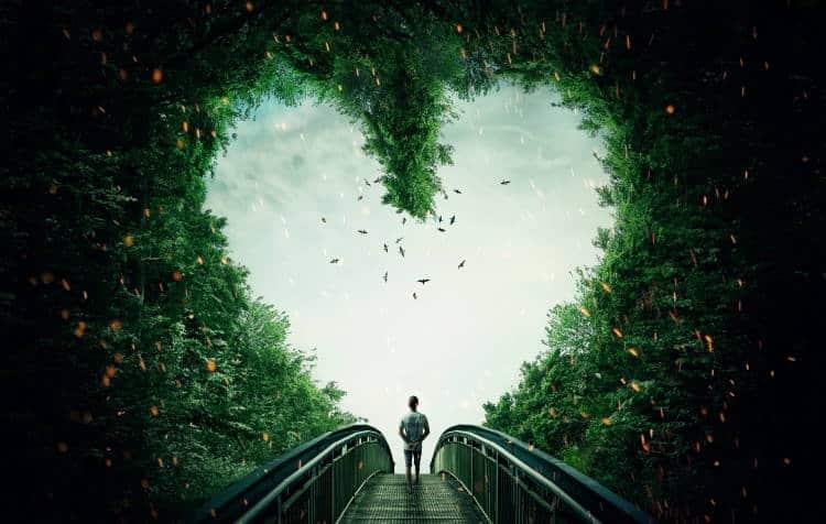 Η καρδιά είναι πηγή νοημοσύνης και εσωτερικής καθοδήγησης
