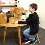 Ο Titan είναι ο πρώτος σκύλος θεραπευτής που βοηθά κακοποιημένα παιδιά