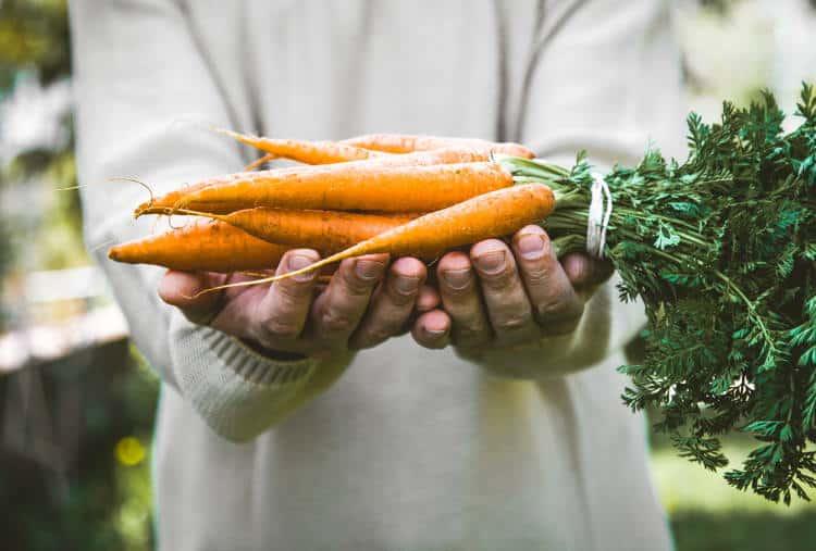 Τα 7 πιο υγιεινά λαχανικά του χειμώνα
