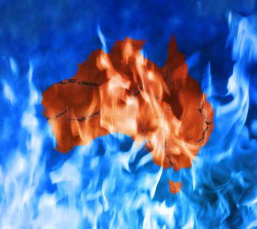 Αυστραλία: 500 εκατομμύρια ζώα έχουν καεί μέχρι σήμερα στις μεγαλύτερες πυρκαγιές των τελευταίων ετών