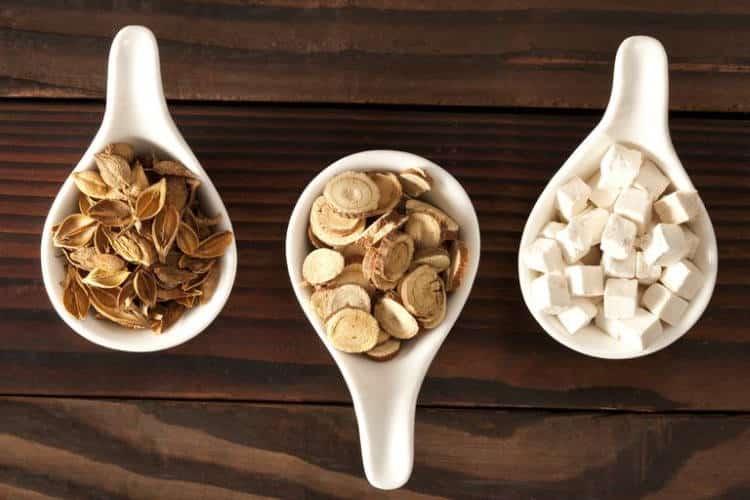 Μανιτάρι Πόρια: Ποια είναι τα οφέλη του και γιατί χρησιμοποιείται από την Παραδοσιακή Κινέζικη Ιατρική