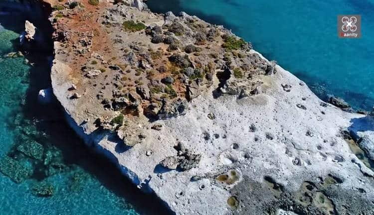 Το μοναδικό απολιθωμένο φοινικόδασος της Ευρώπης βρίσκεται στην Ελλάδα (Βίντεο)