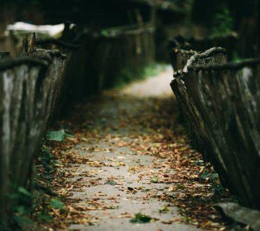 Ρ.Γ. Έμερσον: «Μην πηγαίνετε εκεί που οδηγεί ο δρόμος, αλλά εκεί που δεν υπάρχει δρόμος και αφήστε πίσω σας ίχνη»