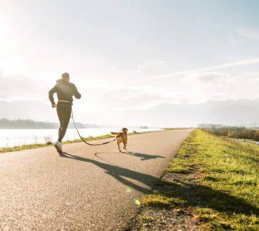 Άσκηση: Σε ποιες περιπτώσεις βοηθά και πότε είναι καλύτερα να την παραλείπουμε