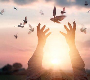 Κωνσταντίνος Φυτόπουλος: «Βοηθήστε αυτόν που κουτσαίνει, να πετάξει»