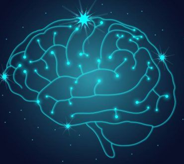 Επιστήμονες καταγράφουν σε βίντεο πώς δημιουργείται στον εγκέφαλο μια νέα ανάμνηση