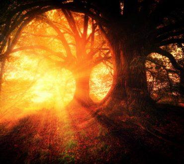 Το Bhagavad Gita και ο δρόμος προς τη μεταμόρφωση