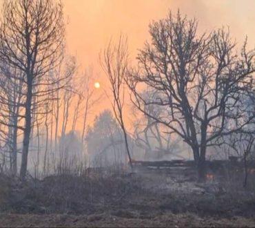 Δασική πυρκαγιά στο Τσερνομπιλ εκτοξεύει τα επίπεδα ραδιενέργειας 16 φορές πάνω από το κανονικό
