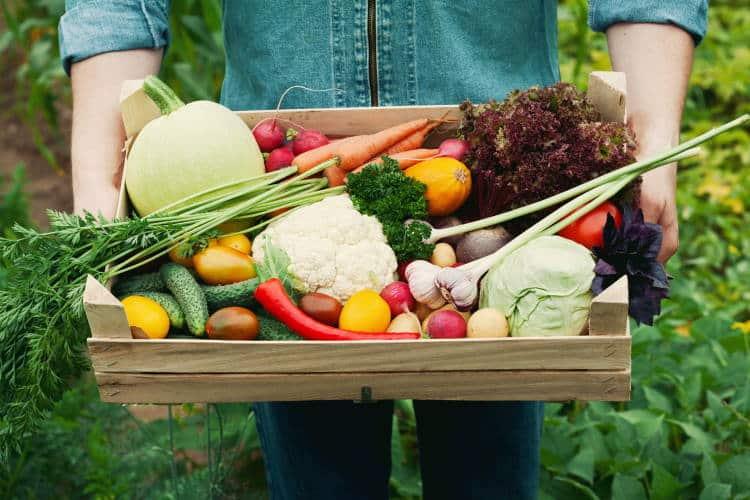 Λίστα «Dirty Dozen»: Τα φρούτα και τα λαχανικά με τα περισσότερα και τα λιγότερα φυτοφάρμακα για το 2020