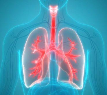Η βιταμίνη που προστατεύει τους πνεύμονες και σε ποιες τροφές μπορούμε να τη βρούμε
