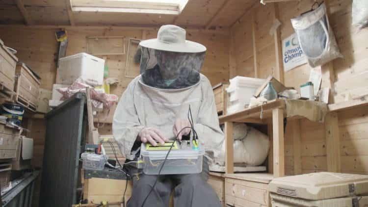 Μελισσοκόμος στη Βρετανία συνθέτει ηλεκτρονική μουσική με ήχους των μελισσών