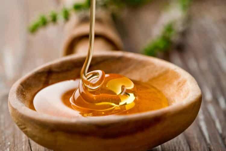 Το μέλι αναστρέφει την αντοχή των βακτηρίων στα αντιβιοτικά (μεταξύ των άλλων)