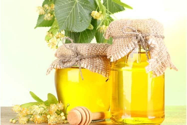 Μέλι από Φλαμούρι: Γευστικό αρωματικό και με φαρμακευτικές ιδιότητες