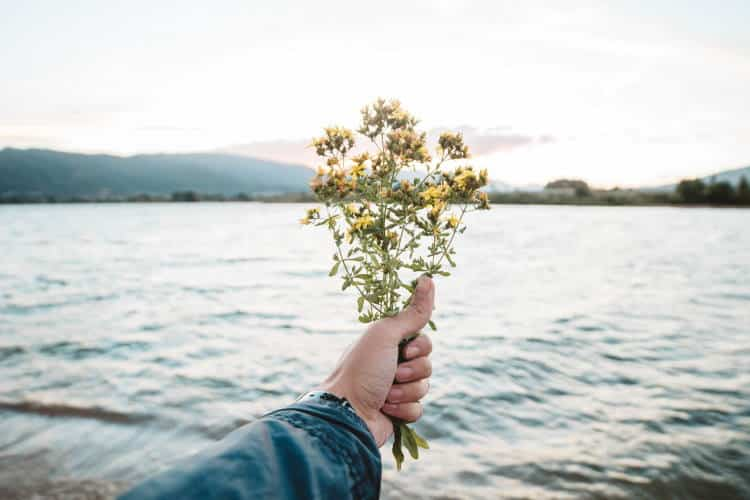 Να νιώθεις ευγνωμοσύνη για όσα σου προσφέρθηκαν απλόχερα