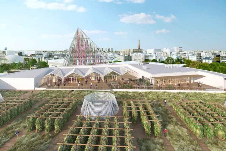 Παρίσι: Ο μεγαλύτερος αστικός κήπος σε ταράτσα του κόσμου δίνει στους κατοίκους φρούτα και λαχανικά